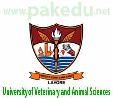 UVAS Lahore , University of Veterinary and Animal Sciences, UVAS