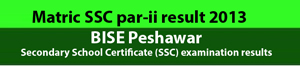 SSC part-ii result 2013 BISE Peshawar board Secondary School Certificate (SSC) examination results matric result class x , calss 10