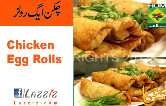 Egg Roll 258 ALL NEW EGG ROLL RECIPE IN URDU