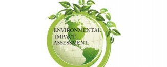 environment impact assessment (EIA)